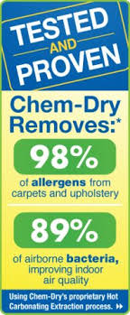 for carpet upholstery cleaning in salt lake city ut consider
