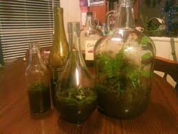 Wine Bottle Planters by Recycled Wine Beer Bottle Planters Beer Bottles Planters And Bottle