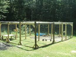 Backyard Chickens Forum by Section Off Parts Of The Run Ro Allow The Grass To Grow Kind Of A