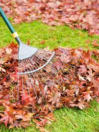 how to prepare lawn for winter hgtv