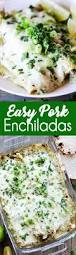 best 25 pork enchiladas ideas on pinterest roast pork