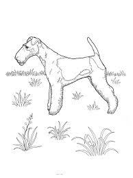 coloriage a imprimer chien p5430