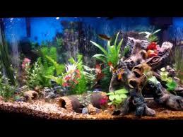 aquarium decoration ideas freshwater furniture aquarium decorations buildings cool fish decor ideas 45