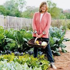 container vegetable garden ideas design landscaping u0026 backyards