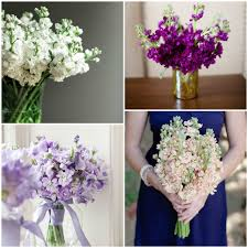 wedding flower packages wedding planner and decorations