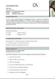 corporate resume format excellent resume format