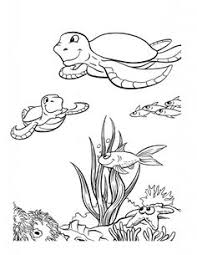 animal coloring pages for children animal coloring pages for adults coloring pages