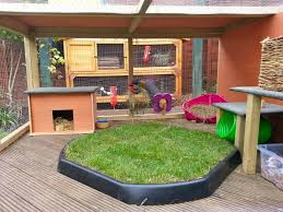 Large Rabbit Hutch Best 25 Large Rabbit Run Ideas Only On Pinterest Large Rabbit
