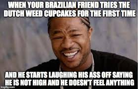 Brazilian Memes - yo dawg heard you meme imgflip
