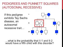 genetics practice problems pedigree tables solving pedigree genetics problems youtube