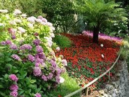 immagini di giardini fioriti giardini fioriti parco cascata di varone foto di garda
