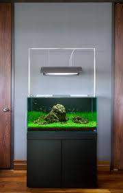 134 best aquariums images on pinterest aquarium ideas fish