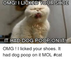 Dog Poop Meme - omg i licked your shoe it had dog poop on it omg i licked your