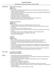 resume format 2013 sle philippines payslip payroll resume sles velvet jobs