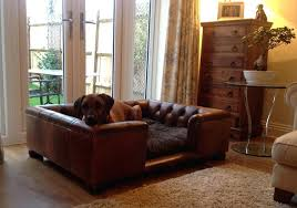 dogs and leather sofas at my wits end over dog hair on the sofa