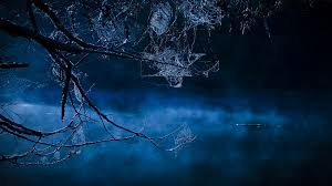 blue halloween background scary spider wallpaper wallpapersafari