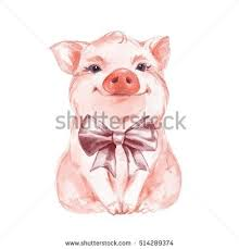 drawn pig how to draw a pig pencil and in color drawn pig how to