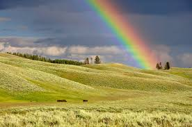Wyoming landscapes images Free stock photo of rainbow over the yellowstone landscape jpg