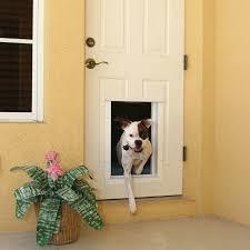Exterior Pet Door Exterior Door With Door Design Door Stair Design