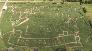 matthews marner likenesses crop up in corn maze
