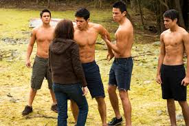 provokes paul the twilight saga moon the wolfpack