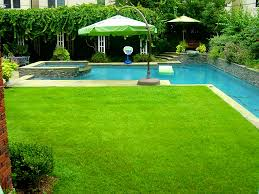 decoration enchanting backyard landscaping ideas swimming pool