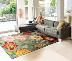 Pretty Area Rugs Decorating Have A Wonderful Floor With Nourison Rugs Ideas