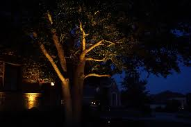 Outdoor Up Lighting For Trees Highland Park Outdoor Lighting Dallas Landscape Lighting