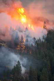 Wild Fire Cle Elum Wa by 745 Best Fire Tornado Images On Pinterest Fire Tornado
