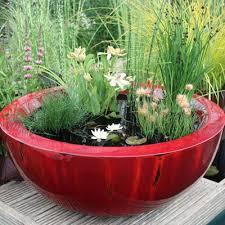 Mini Water Garden Ideas 36 Best Container Water Gardens Images On Pinterest Gardening