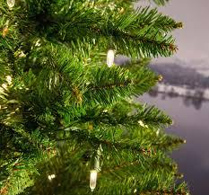 Pencil Christmas Tree Pre Lit Uk by 6 5ft Pre Lit Kingswood Fir Pencil Artificial Christmas Tree