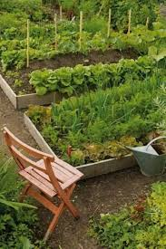 large vegetable garden with metal fences vegetable garden with