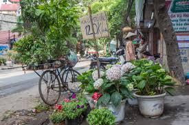 Flower Garden Hanoi by The Prettiest Street In Hanoi Exploring An Oasis In Vietnam U0027s Capital