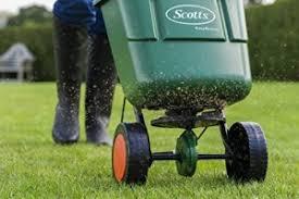 concimazione tappeto erboso come e quando concimare il prato cura tappeto erboso