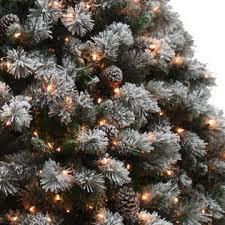 lightly flocked christmas tree d b 9 buchanan pine pre lit christmas tree sears