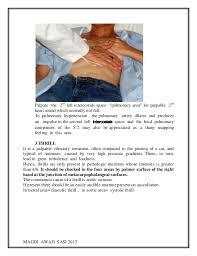 cardiovascular history and examination