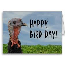 graphics for thanksgiving birthday graphics www graphicsbuzz