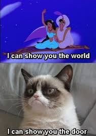 Best Grumpy Cat Memes - i can has cheezburger grumpy cat funny animals online