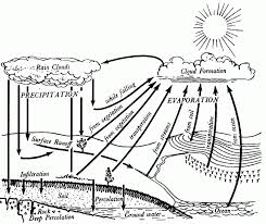 water cycle coloring page coloring home