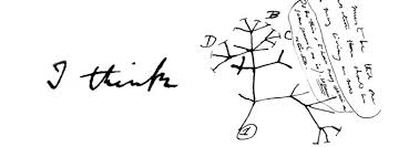 darwin s withering tree of the institute for creation research