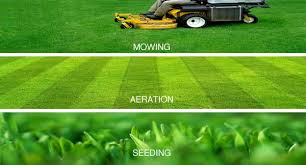 just aeration va organic lawns