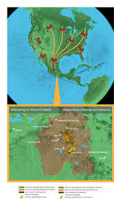 Map Of Michoacan Mexico by Mexico Michoacan Monarch Migration Route U2014 Land Life Magazine