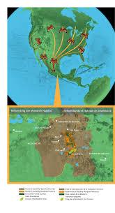 Morelia Mexico Map by Mexico Michoacan Monarch Migration Route U2014 Land Life Magazine