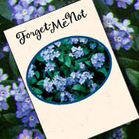 forget me not seed packets forget me not seed packets fundraiser idea dedicated to celebrate