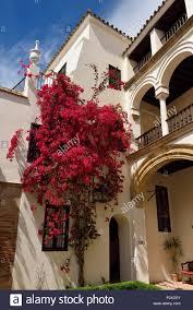 interior courtyard with bougainvillea of las casas de la juderia