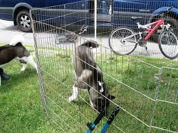 wood portable dog fencing portable dog fencing ideas u2013 design