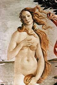 paintings of aphrodite aphroditevenus painting granger