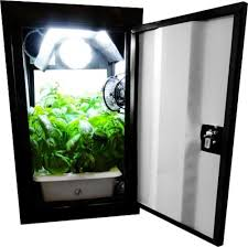 Superclosets by 10 Best Grow Boxes For Growing Weed U2022 Green Rush Daily