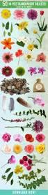 spring floral mockup scene creator by l design bundles