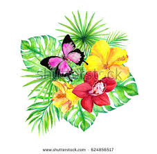 jungle leaves flowers orchid hibiscus stock illustration